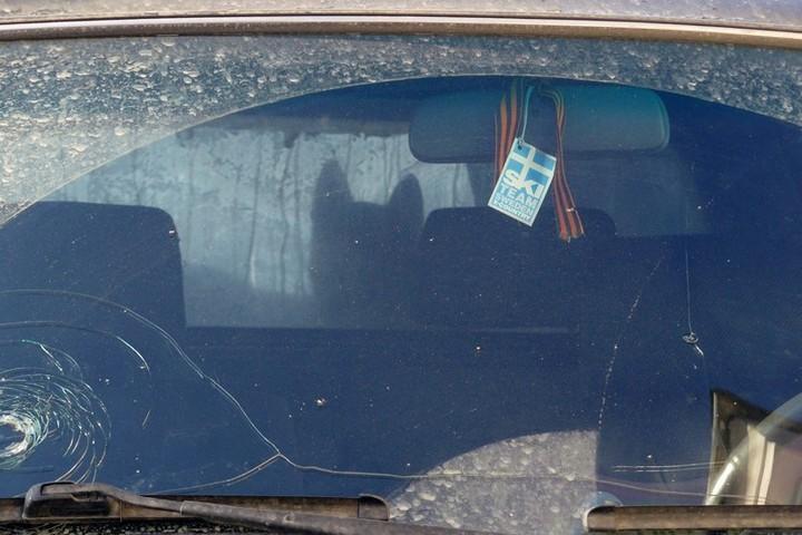 Гражданин Железногорска наночь запер собаку вавтомобиле
