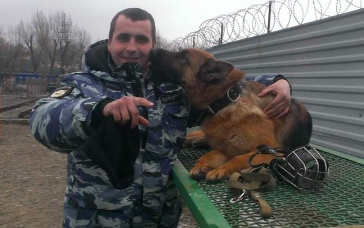 Служебная овчарка Коша помогла поймать вора вВоронежской области