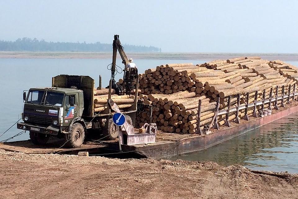 Предпринимательница изБратска нелегально перевезла заграницу лес на50 млн руб.