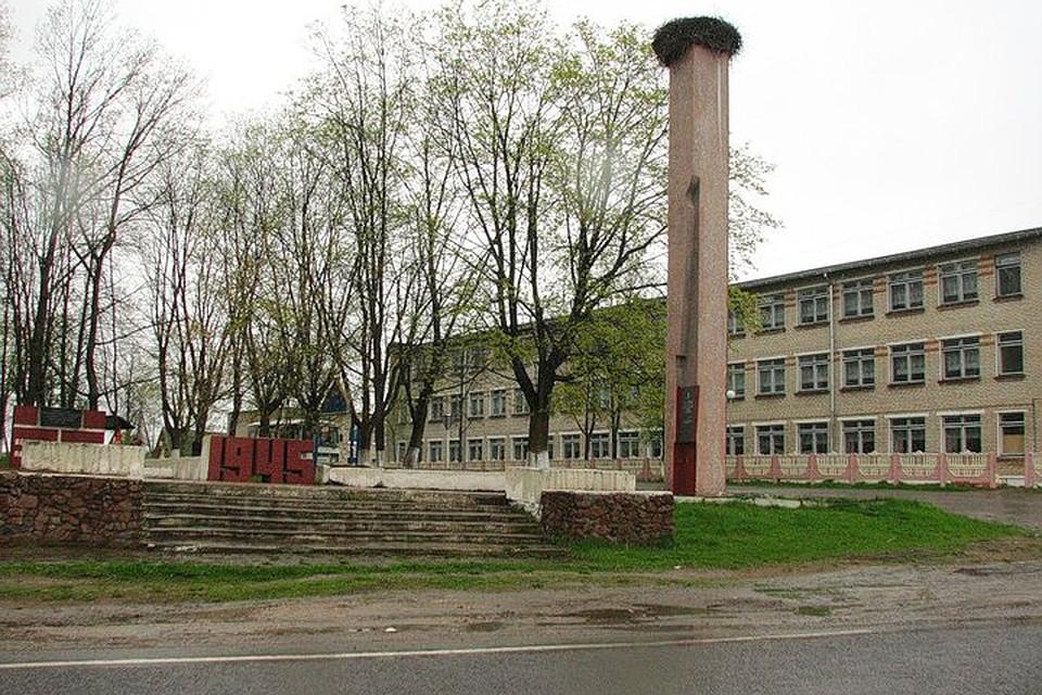 """Аисты уже 23 года селятся на памятнике героям войны в деревне Клястицы. Фото: Вконтакте, группа """"Клястицы""""."""