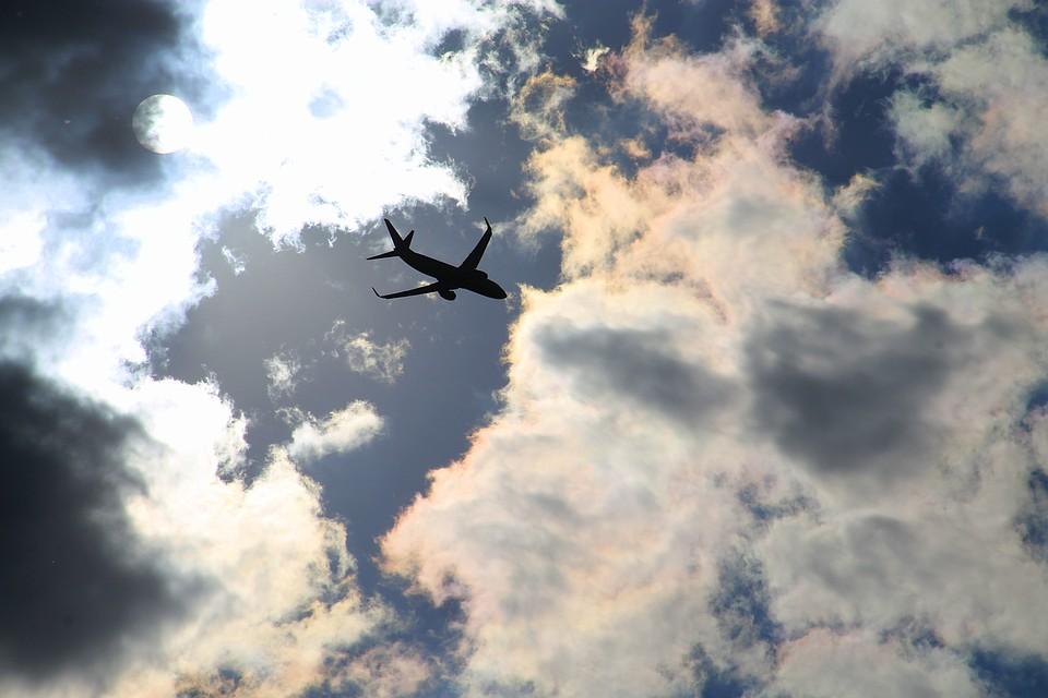 Следовавший вНовосибирск самолет экстренно вернулся в«Пулково» из-за пассажира