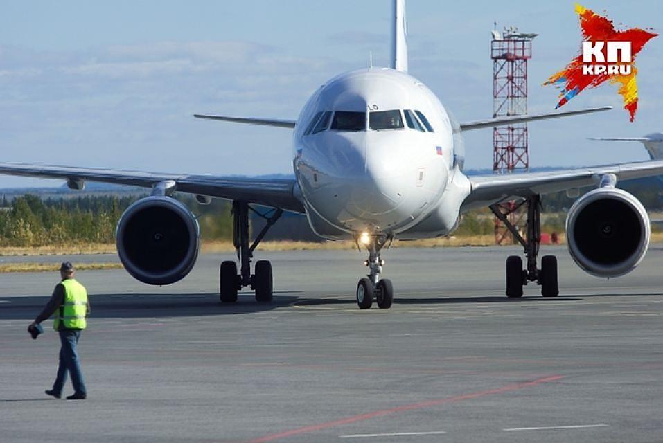 Вылет самолета Кемерово— Москва отложили из-за птицы
