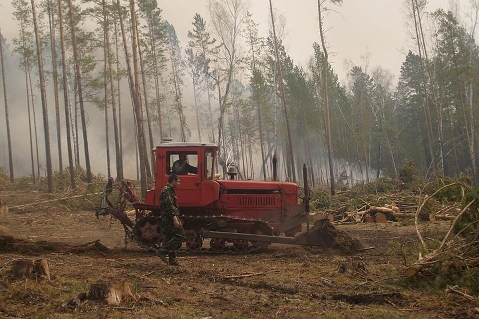 ВИркутской области полыхает неменее 13 тыс. гектаров тайги, площадь пожаров возрастает