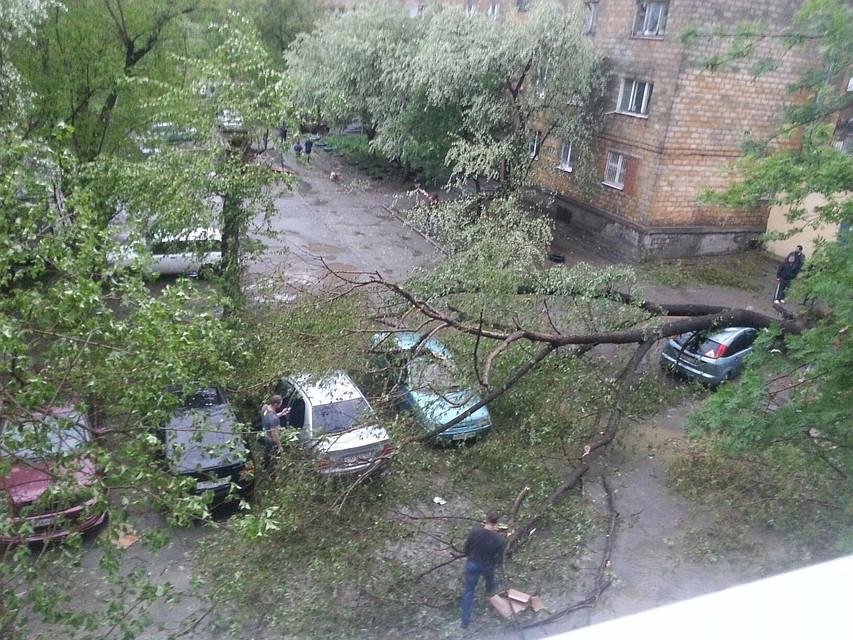 Из-за урагана режимЧС введен в 2-х муниципалитетах Свердловской области