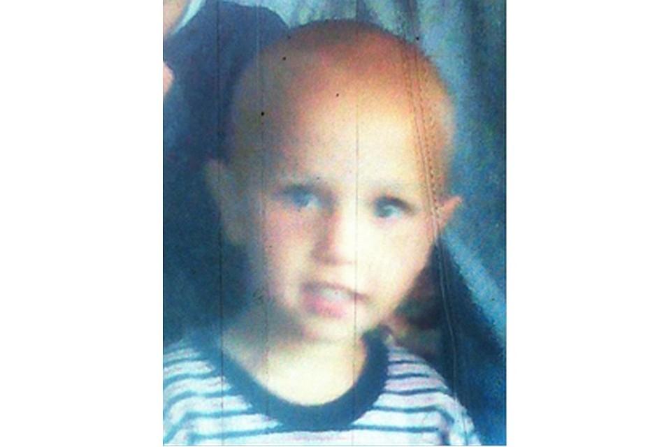 ВЛипецкой области вовремя сенокоса пропал трёхлетний ребенок