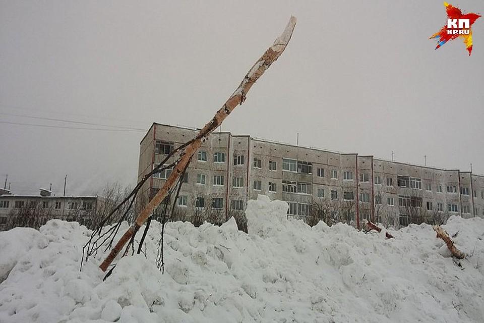 Обвиняемые в погибели людей вовремя схода лавины вКировске отделались штрафом