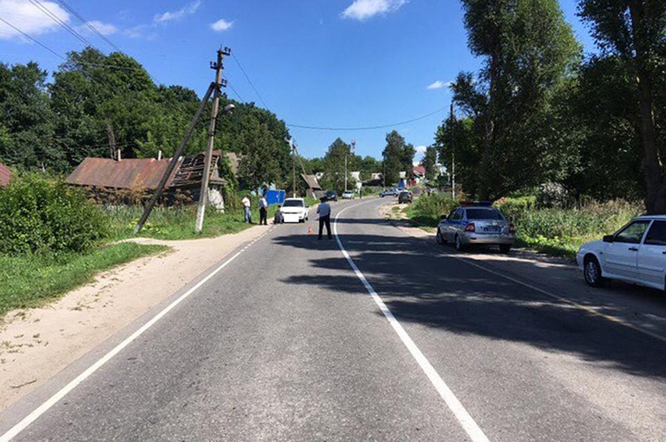 ВБрянской области насмерть сбили 5-летнего ребенка