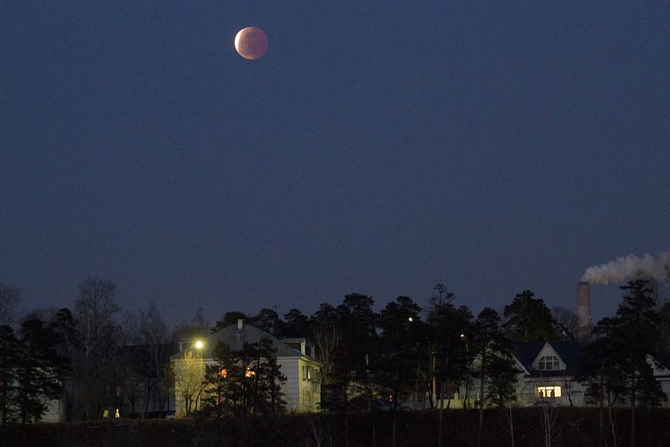 На текущей неделе тамбовчане смогут увидеть «звездный дождь» и«кровавую Луну»