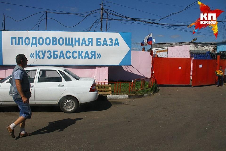 ВНижнем Новгороде открыта вакансия кота-первопроходца сокладом в20 тыс.