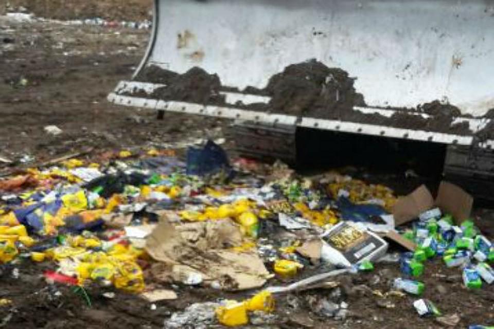 572 кило «санкционных» мяса имолока пустили под бульдозер вПетербурге