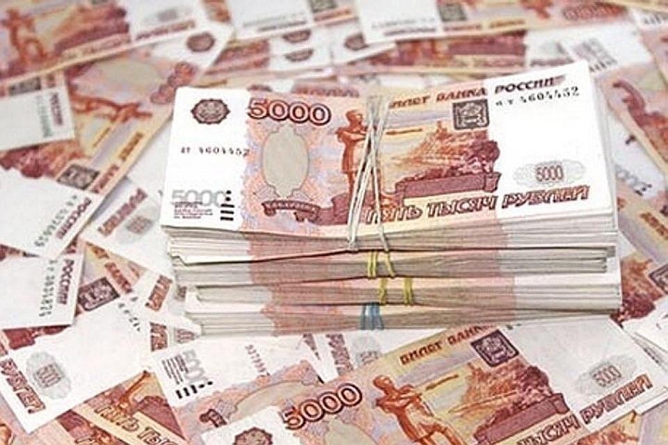ВПетербург привезли похитившего 26 млн руб.  правонарушителя