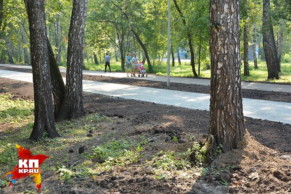 ВКазани навыходных откроют новый парк наберегу Ноксы