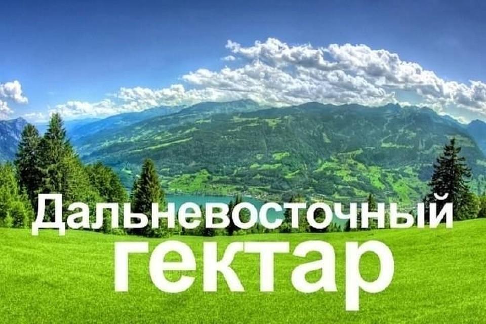 ВПриморском крае рассмотрят доэтого отклоненные заявки на«гектары»