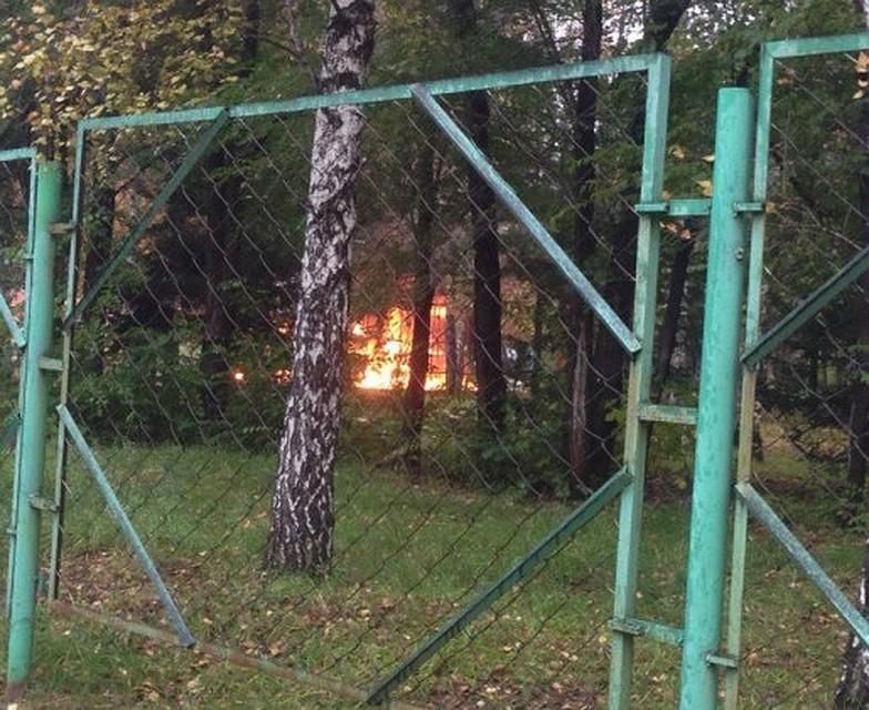 Вбарнаульском парке «Эдельвейс» сгорела беседка