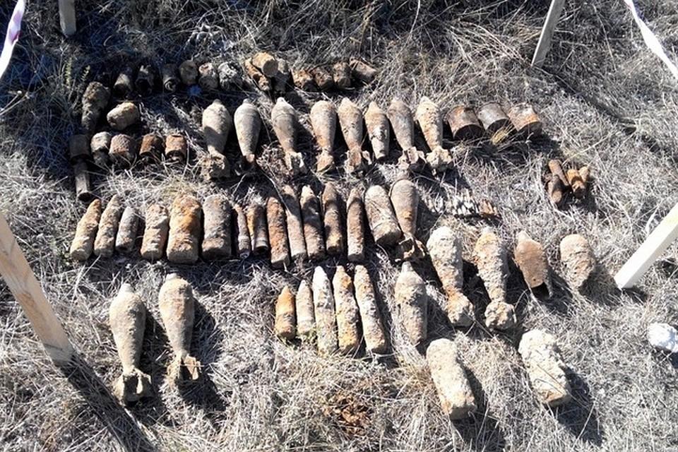 Неменее сотни боеприпасов времен ВОВ найдено всадовом товариществе вСевастополе