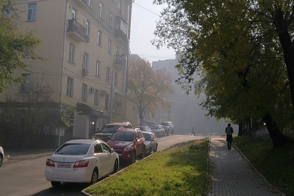 Дым отприродных пожаров вХабаровске сохранится напротяжении дня