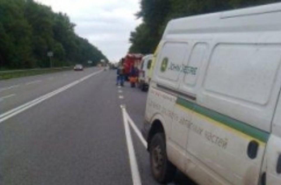 Два человека погибли вмассовом ДТП сучастием велосипедиста вКурской области