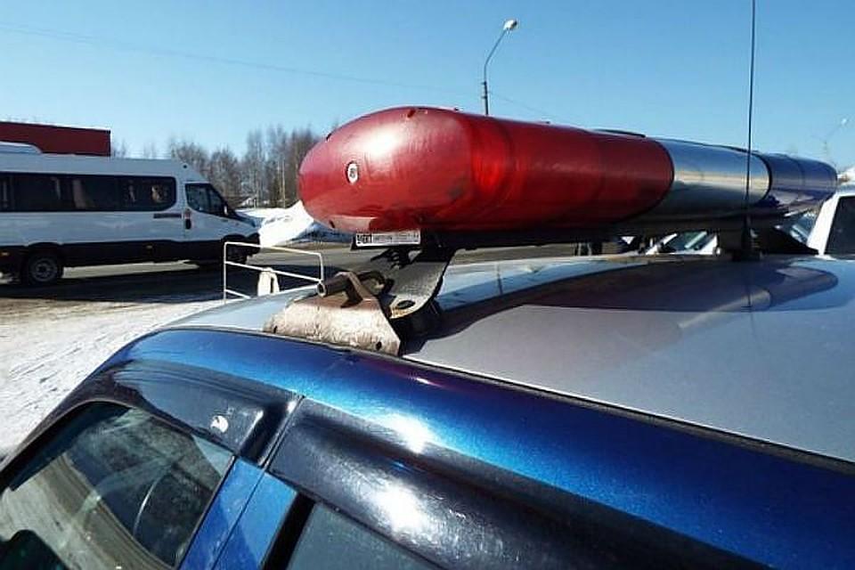 Лада, пушки, два кавказца: вПетербурге задержали вооруженных иногородних