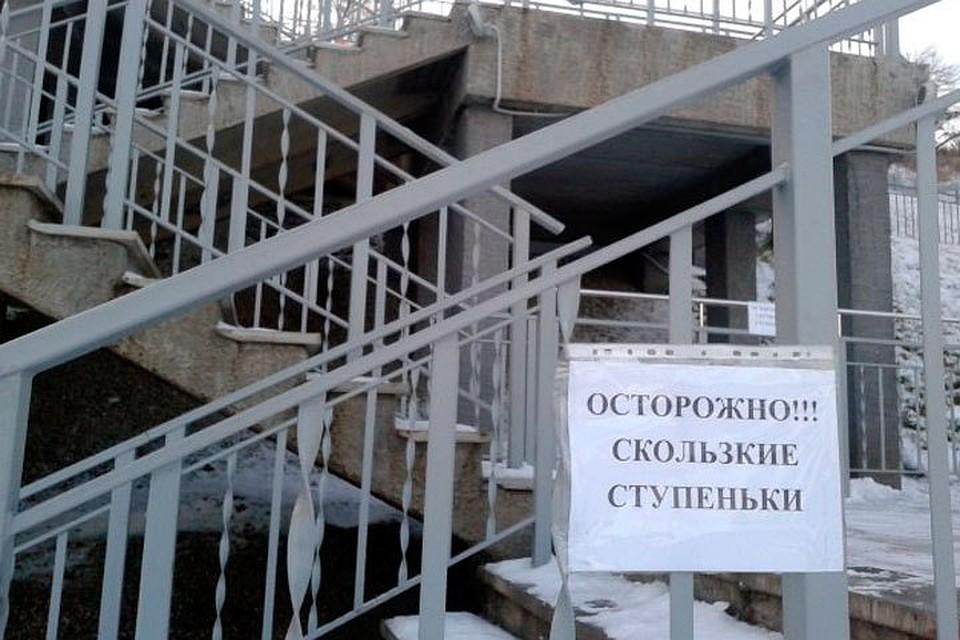 Дугин поручил очистить отльда лестницу Нагорного парка Барнаула
