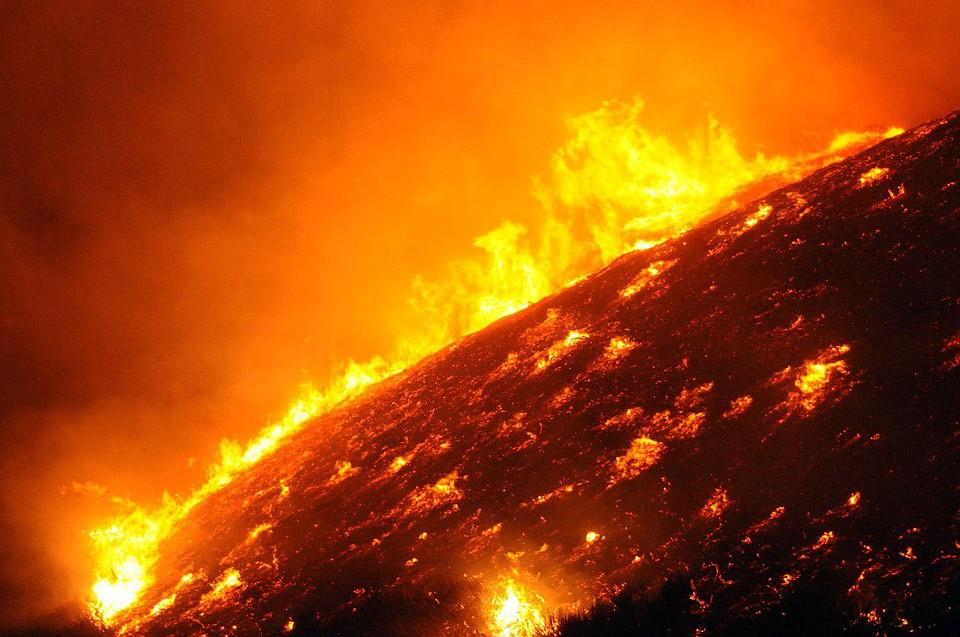 ВЛос-Анджелесе ввели режимЧП из-за лесных пожаров