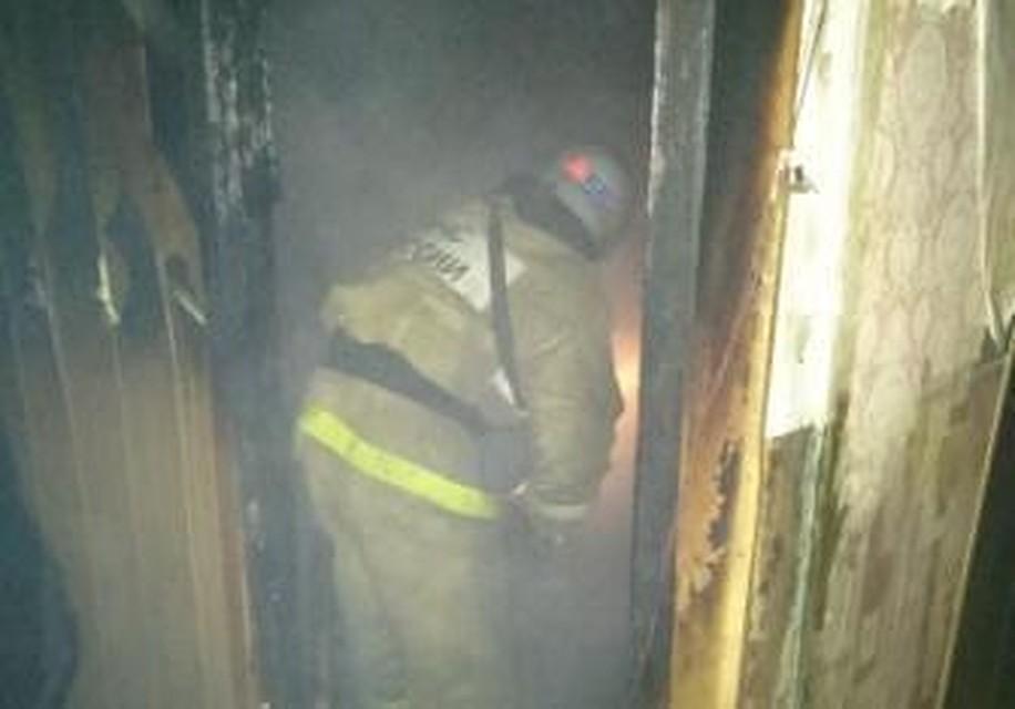 ВТульской области газодымозащитники спасли изпожара двух человек