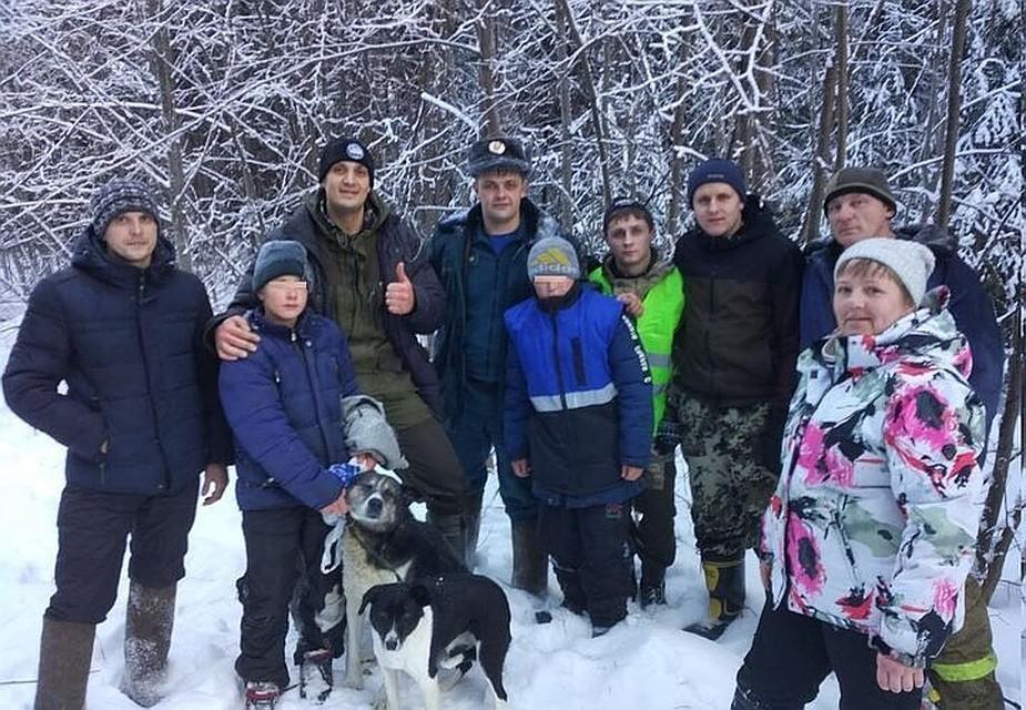 ВСвердловской области собаки недали умереть двум мальчишкам, заблудившимся влесу