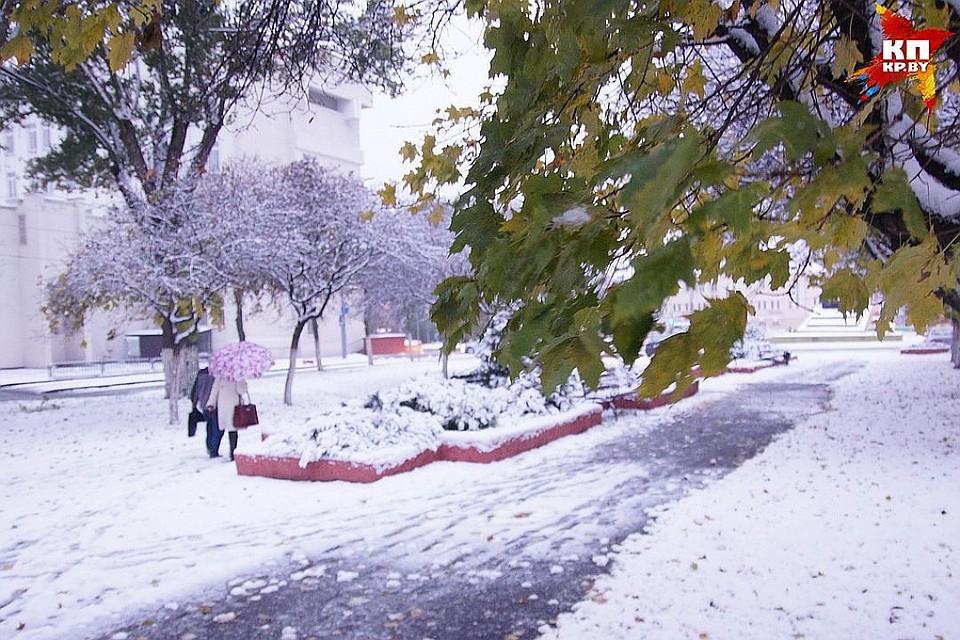 14 января в Беларуси будет до минус 11 градусов