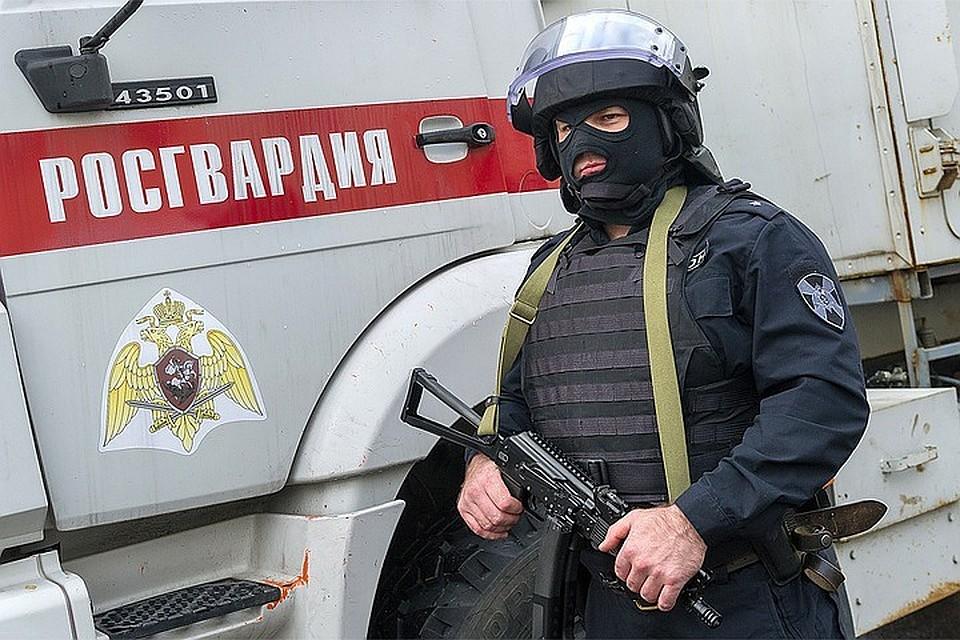 Путин подписал закон обохране губернаторов солдатами Росгвардии