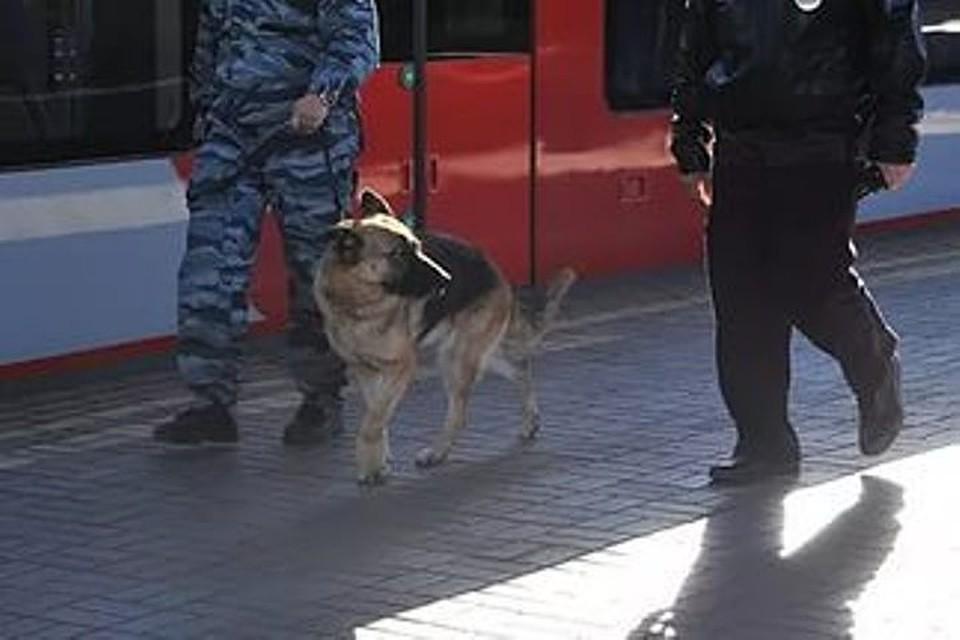 ВВоронеже из-за подозрительного предмета эвакуировали поезд