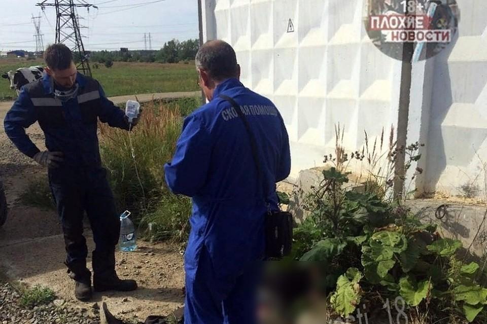 ВЧелябинской области испуганная корова оторвала ногу пастуху. Мужчина скончался