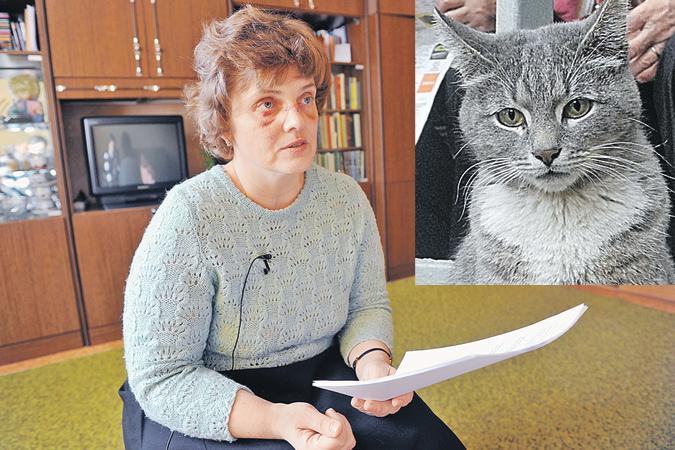 Причина ссоры - дворовые кошки. Над ними, как уверяют соседи, издевался старший сын Анара.