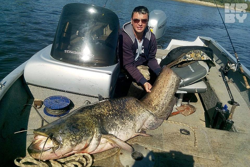 Многие рыбаки хвалят Дмитрия за то, что он не стал убивать сома-великана. Фото: Личный архив