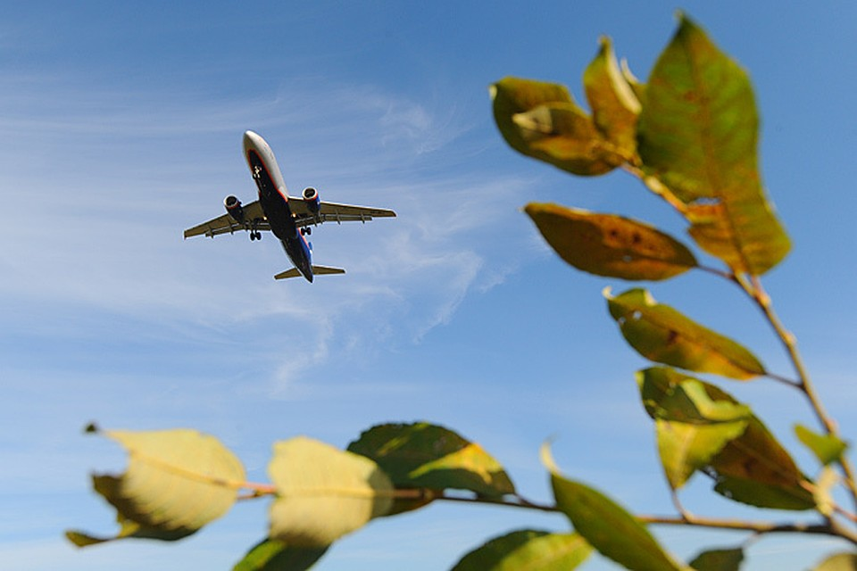 Рейтинг самых выгодных воздушных маршрутов страны составили эксперты туристического поисковика Aviasales