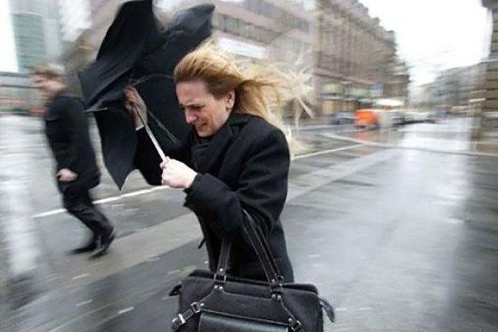 21 июня в Беларуси объявили штормовое предупреждение. Фото: 112.ua