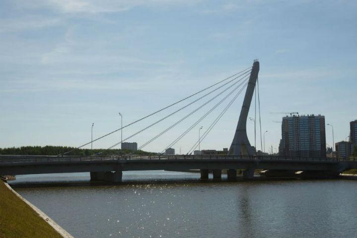 Мост Кадырова находится в Красносельском районе Петербурга