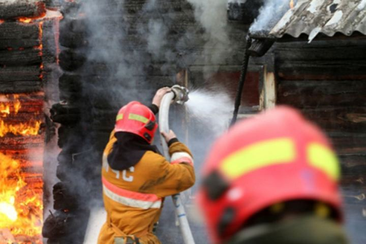 ВПрикамье многодетная мать спасла напожаре троих детей