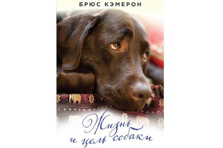 Собаки выглядят в этой книге проводниками космической мудрости