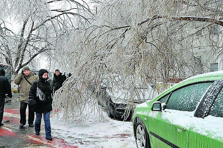 МЧС устраняет последствия ледяного дождя в 7-ми районах Подмосковья