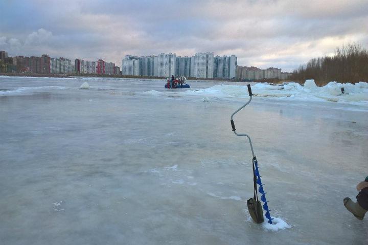 Тело пропавшей неделю назад студентки отыскали вмерзшим влед вПетербурге