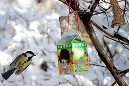 ВСочи орнитологи зарегистрировали два новых вида птиц