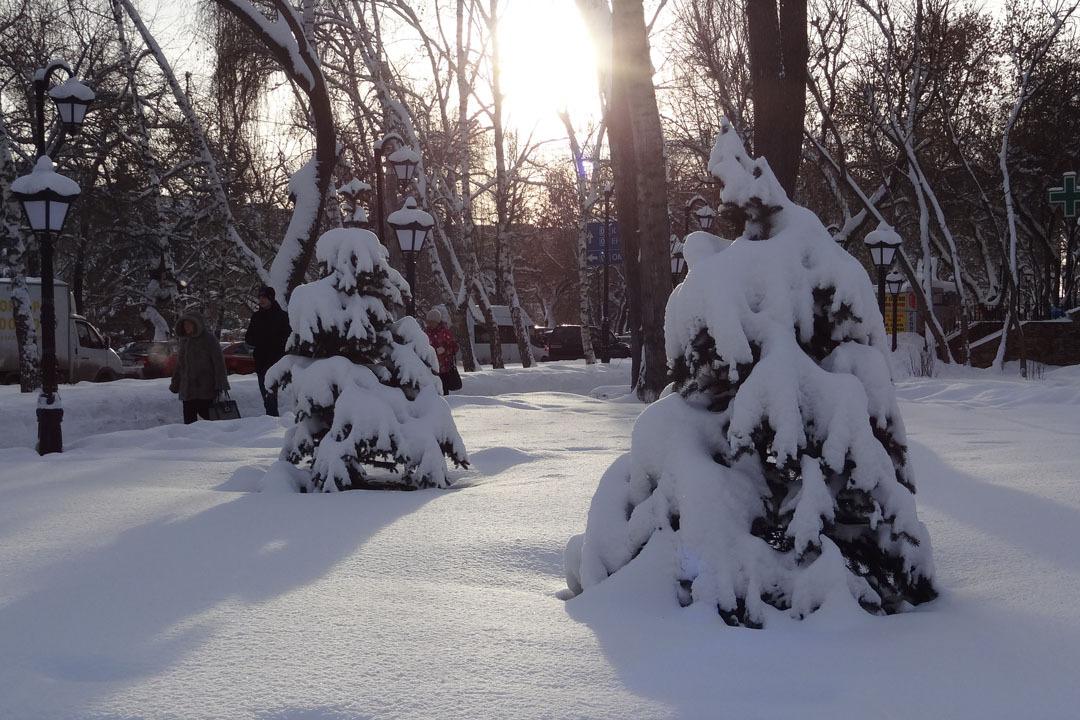 11 января в Югре будет ветрено и морозно