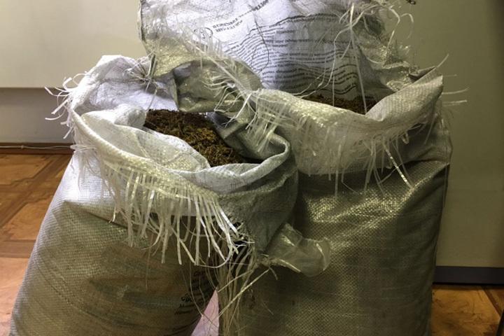 Гражданин Тацинки сохранял дома практически килограмм конопли