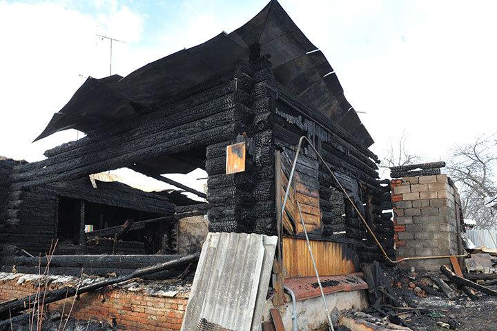 ВСамаре сгорела зоогостиница: погибли 33 кошки и7 собак