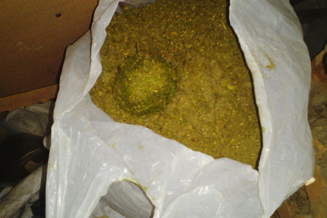 Практически 7кг марихуаны отыскали полицейские ужителя алтайского села