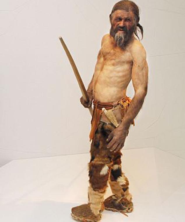 Мумия Отци была обнаружена в Альпах в 1991 году. Несколько лет назад восстановили облик древнего альпийца.