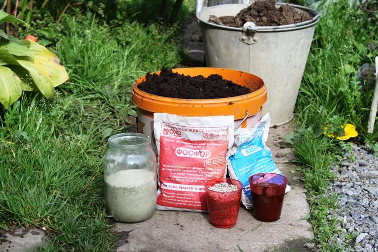 Чтобы пионы были всем довольны, почву для посадки нужно смешать из нескольких компонентов. Фото: АВТОР