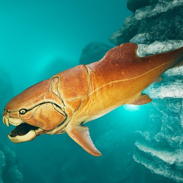Интерактивная выставка «Океан юрского периода»