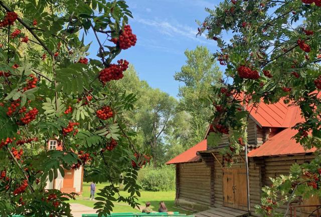 Едем в подмосковное имение Чехова: там дом с витражами и яблоневый сад