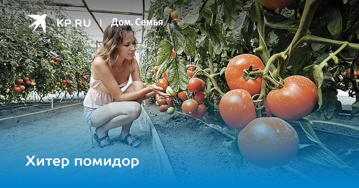 ya-ey-vper-po-samie-pomidori-smotret-kino-na-russkom-yazike-porno-v-dva-huya