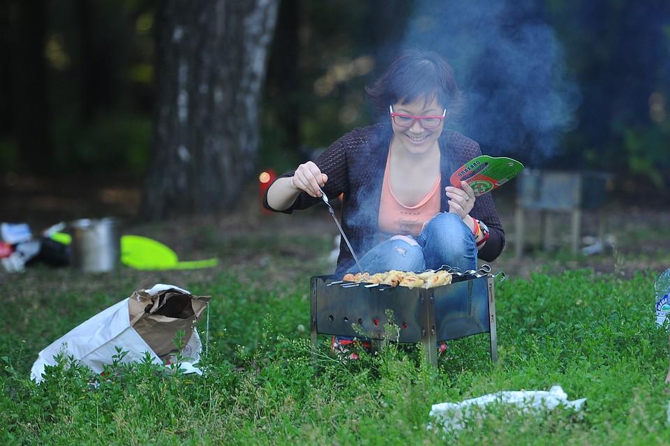 video-pyanie-na-piknike